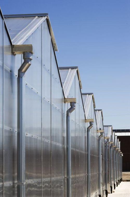 Greenhouse oblique