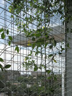 ASU_greenscreen-interior