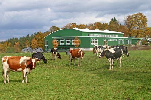 Putney-school-fieldhouse-exterior